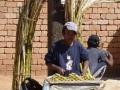 vente de la canne à sucre découpée en rondelle