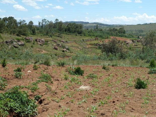 Ambohivatokely 'la colline aux petites pierres'