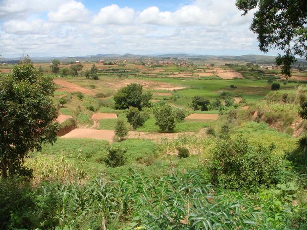 Anosivato vu du village d' Amboasary