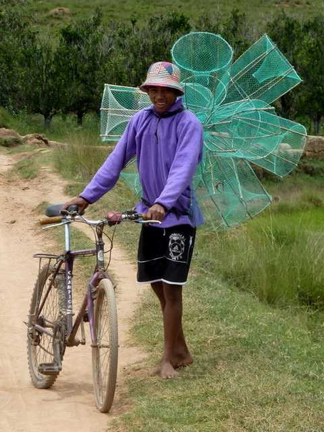 un papillon mauve et son vélo mauve ??