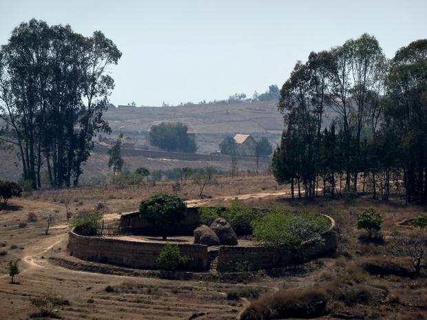 """parc à zébus protégé par un mur de terre """" tamboho """""""