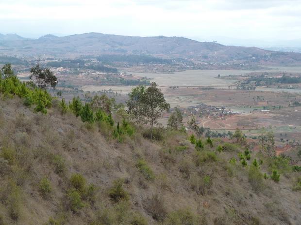 plaine Merimandroso