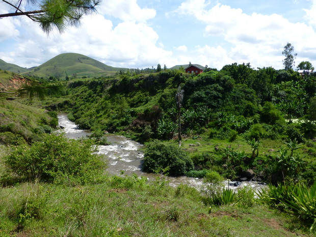 rivière Lily