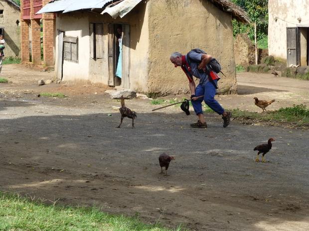 thierry court après les poules
