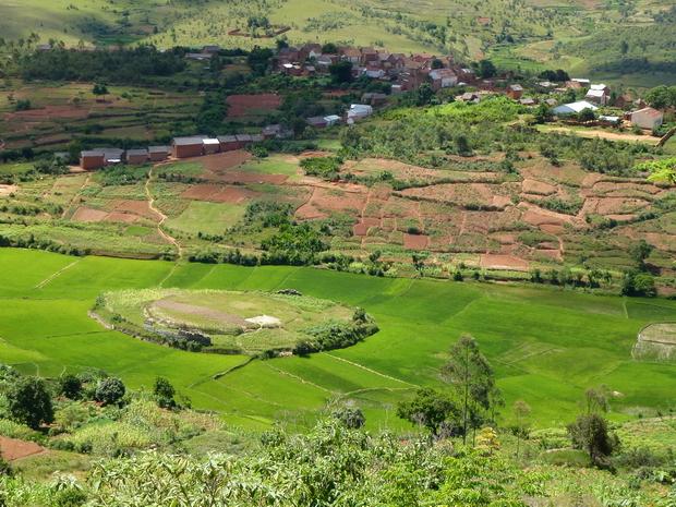 Village Andranosoa au premier plan ilot dans la rizière avec les vestiges d' un tamboho