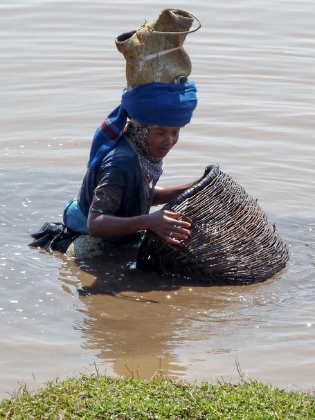 "pêche de la crevette noire "" fozaorana "" avec une nasse "" tandroho """