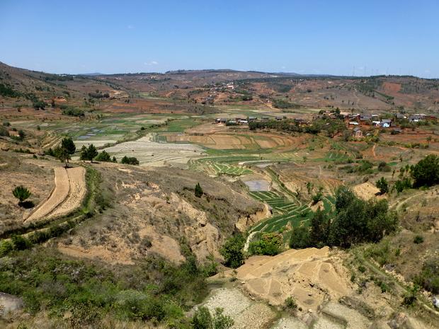 rizières Morarano-Indilana