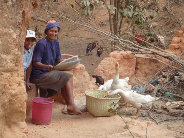 maman trie le riz avec le sahafa