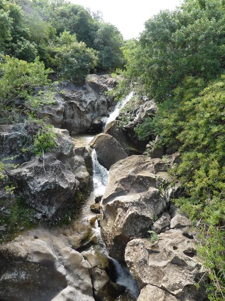 ravine de Petite île