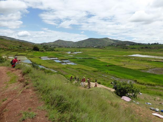 vallée de la Sahora battage du riz