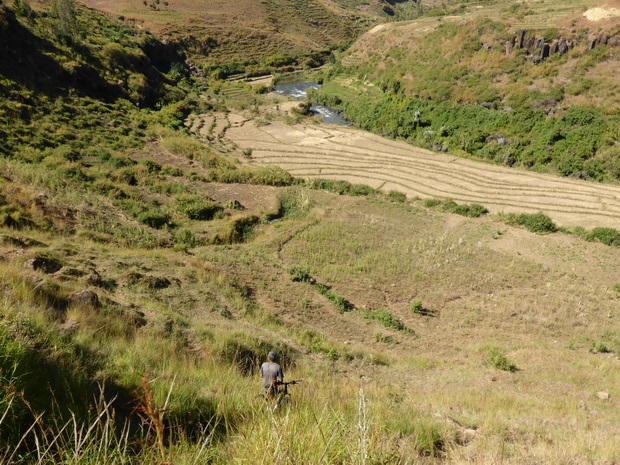Rivière Lily traversée à hauteur d'Avarabonga