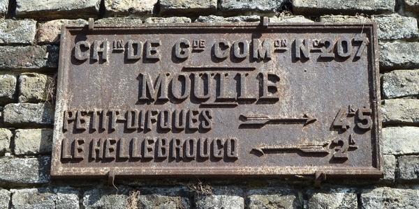 plaque information