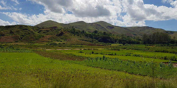massif Ambohijafy