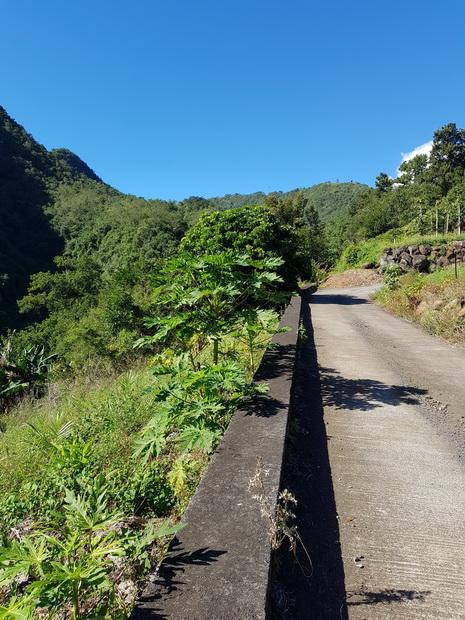 route Ilet Solitude