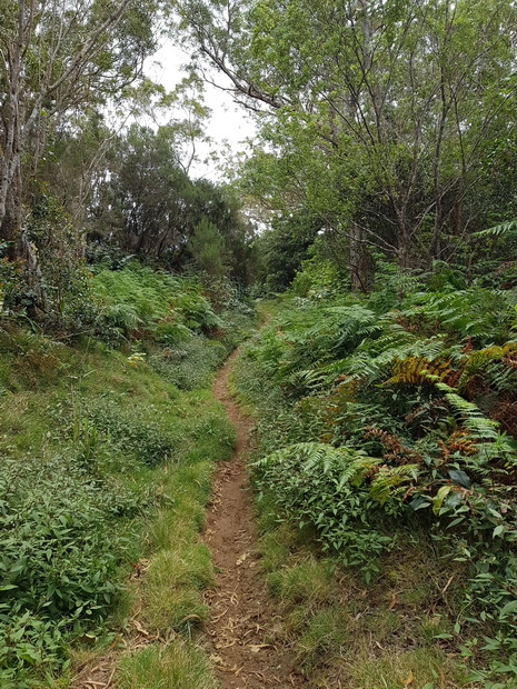 Ancien Sentier Lebreton