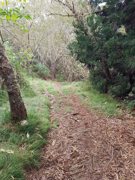 Sentier Lygdamis