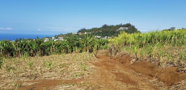 sentier de Petite-Île