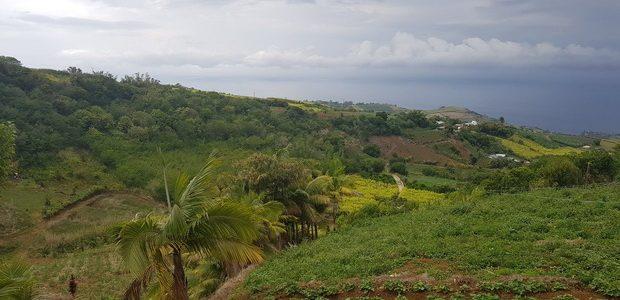 vallée maraîchère