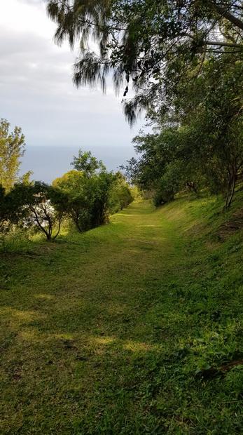 piste herbeuse du Piton