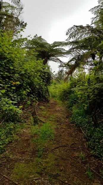 vers la route des Remparts et le Domaine du Relais