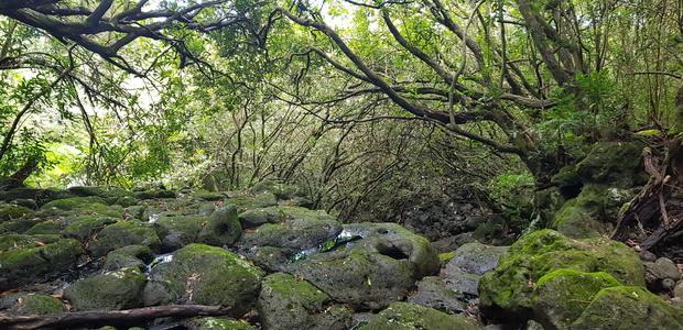 Radier ravine Jacques Payet