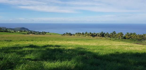 domaine des Milles Cocos