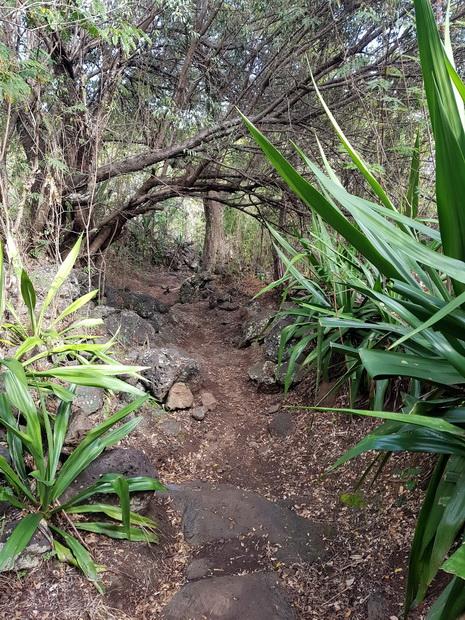 Sentier Pavé