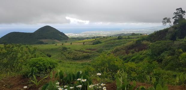 Piton de Mont Vert