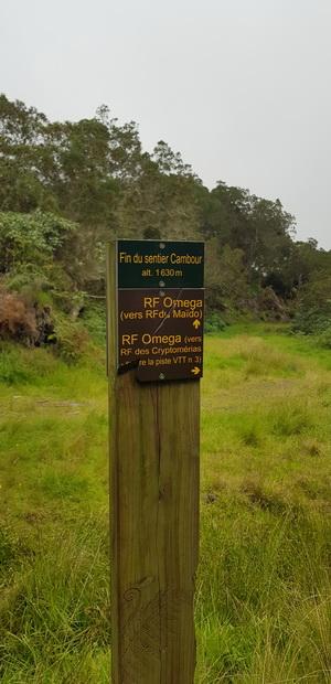 RF Omega