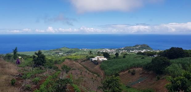 Petite-île de l'allée des Martins
