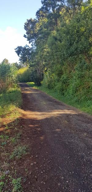 Chemin Boissy