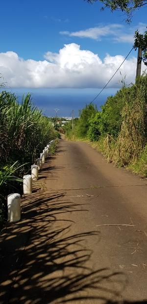 Chemin des Alouettes