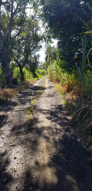 Chemin Mon Repos