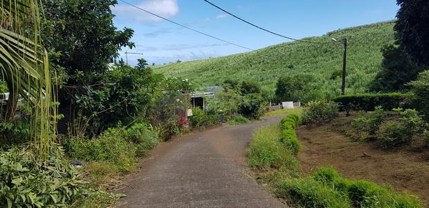 Chemin des Huppes