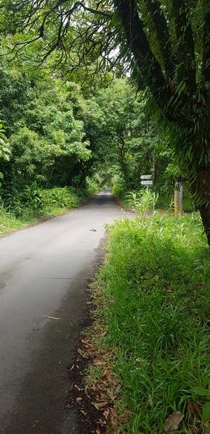 Chemin de l'Ilet Danclas