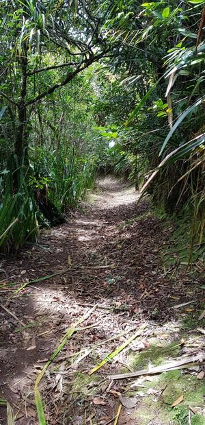 Sentier de l'Eden