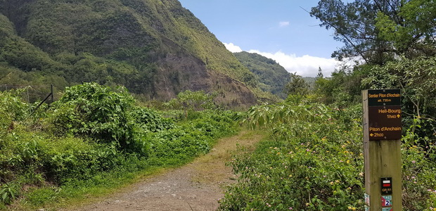 Chemin Mare d'Affouche vers le Piton d'Anchaing