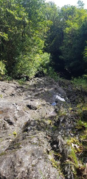 ravine de Bois Blanc