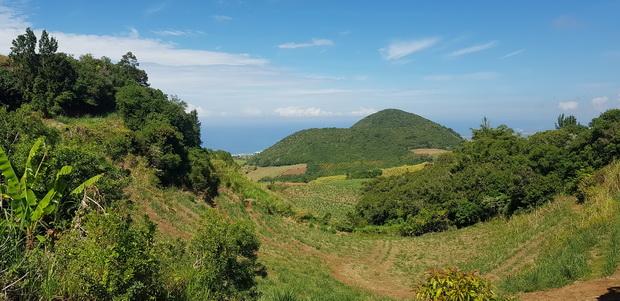 Anse les Hauts: Allée des Muguets vue sur le Piton de Mont Vert