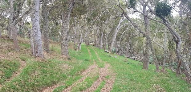 Chemin Mondon propriété Maudan sentier privée