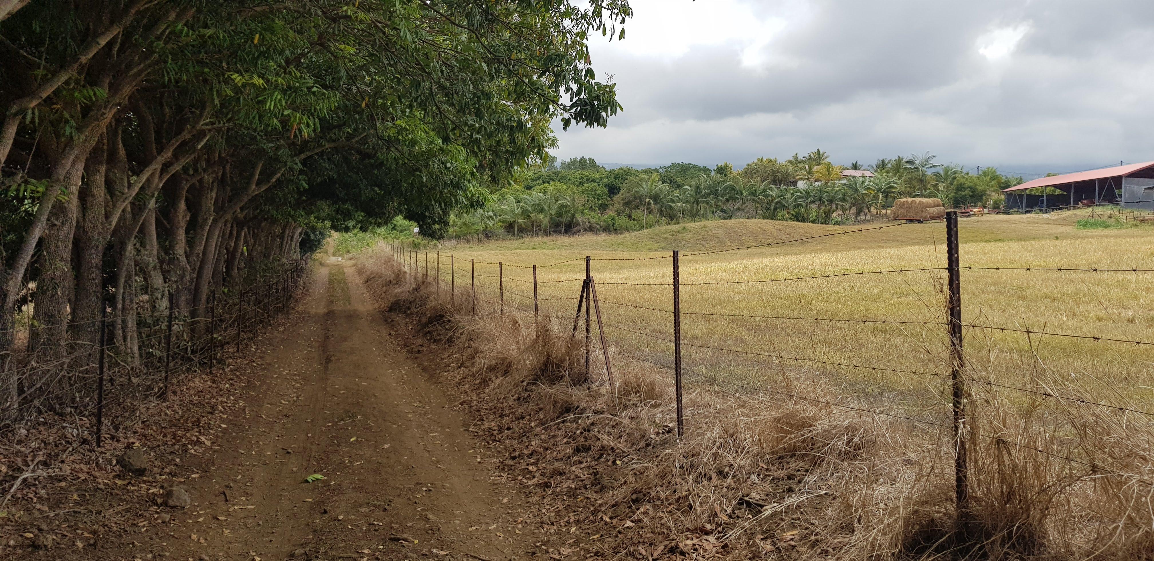Caserne Dupuis St Pierre le Tampon que des sentiers de terre: Chemin de la Falaise