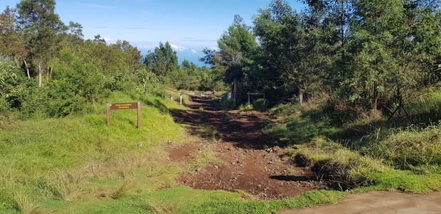 Piste forestière Simambry